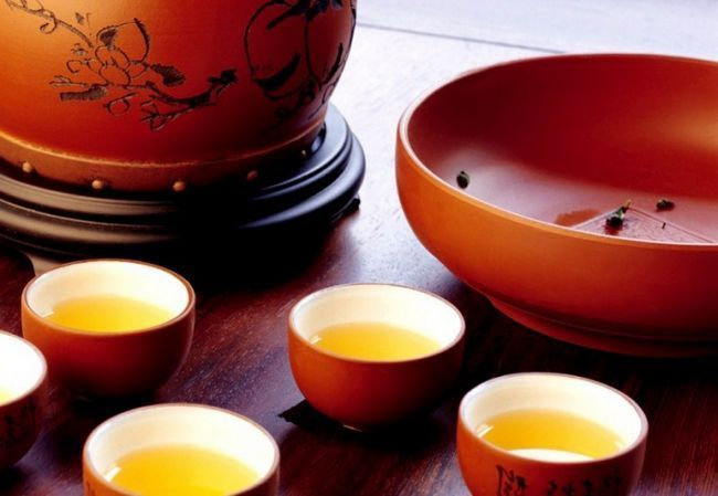 Чим корисний чайний гриб