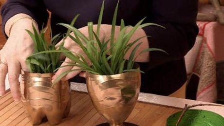 Виготовити горщик для розсади та кімнатних квітів своїми руками