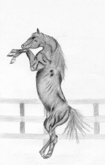 Як малювати кінь, що встала на диби