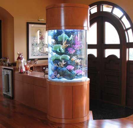 Як пом`якшити воду в акваріумі